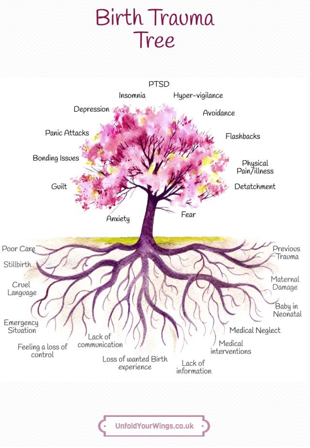 Birth Trauma Tree.png